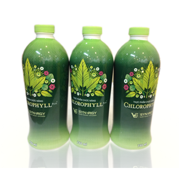 Nước Diệp Lục - Chlorophyll (Synergy)